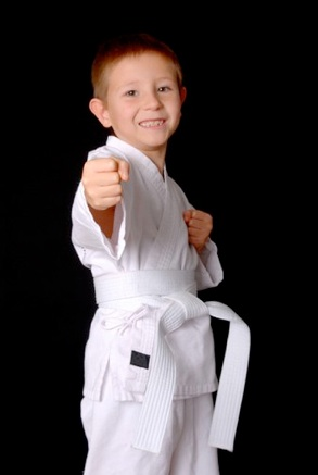 thesis statement on karate